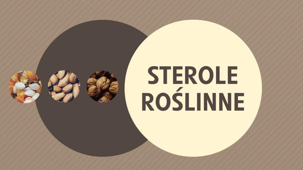 Sterole roślinne - czym są, jakie korzyści zdrowotne przynoszą i jak obniżać cholesterol dzięki sterolom?