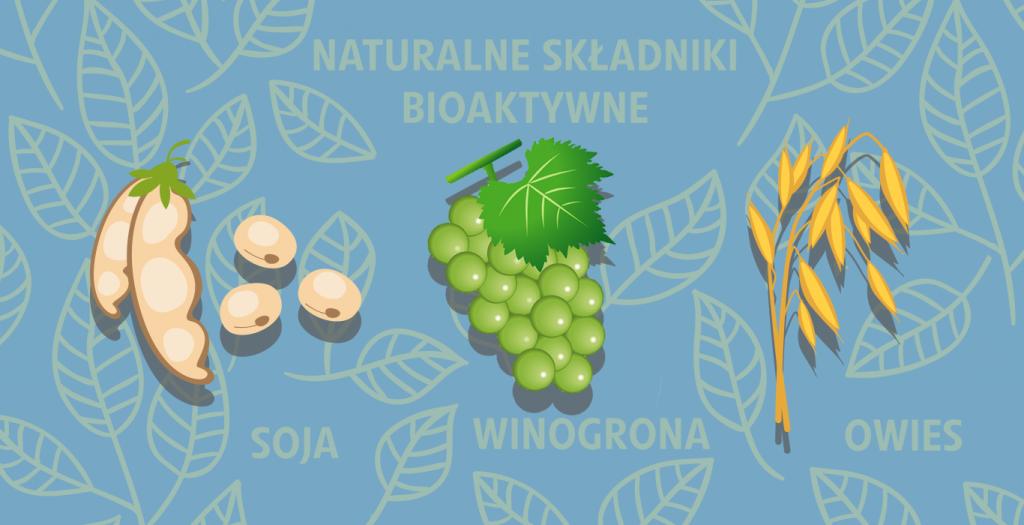 grafika-strona-składniki-bioaktywne