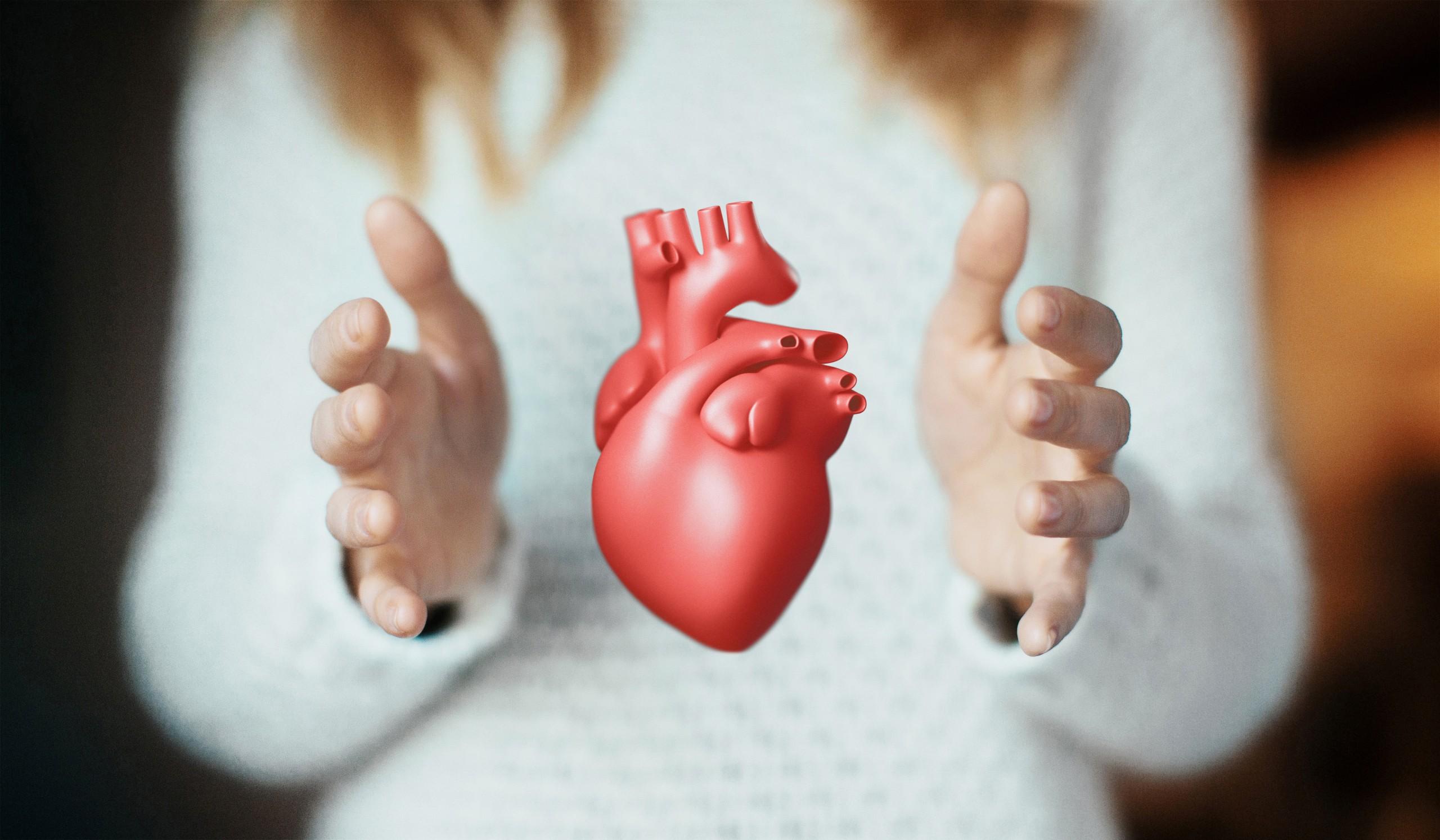 Frakcja wyrzutowa serca. Czym jest i na co wpływa?