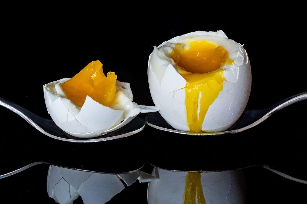 Co zawiera jajko?