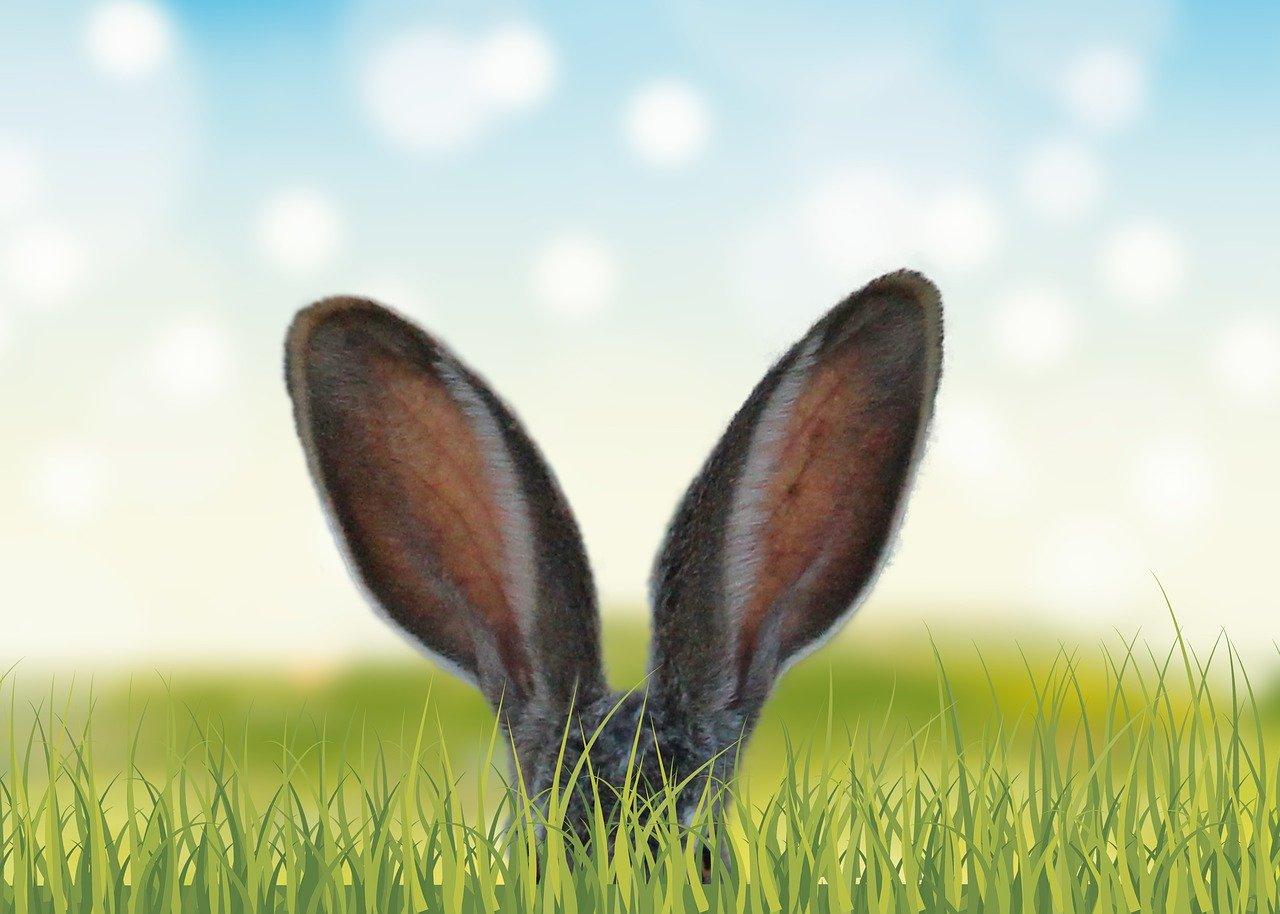 Jak uchronić się przed Wielkanocnym obżarstwem?