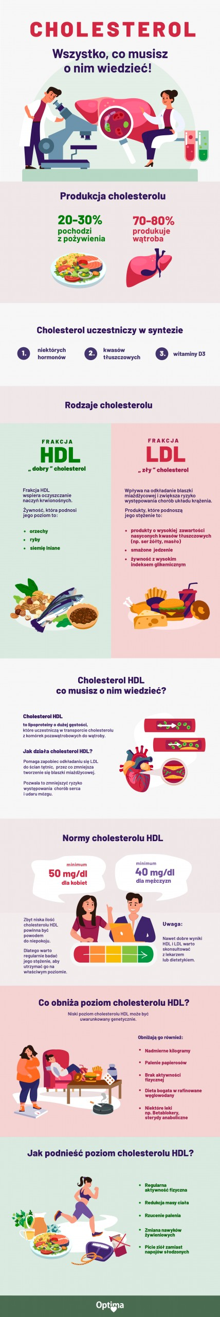 Inografika Cholesterol